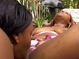 Two sexy black chicks are having sex outside on beautiful summer day! These bitches know how to lick and suck one another's juicy cunts! They just love the taste!