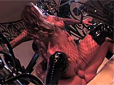 Venus dives right in and goes for the cock in this scene.  She takes it down her throat on the stairway and her man returns the favor, eating her wet pussy.  Venus mounts up for a cock ride and then gets her pink pussy pounded in the piledriver position right there on the stairs.  Watch her gobble d