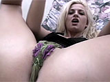 In this scene, Netherlands babe, Bobbi Eden, does a little tease to show off her hot bod.  Her stunt cock shows up and fucks her mouth, and then starts fingering her asshole.  After getting it loosened up, he squeezes his cock in there.  He fucks her in the ass and Bobbi sucks her ass juice from his