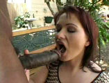 Katja Kassin, a hot German girl, is having her ass fucked today by a hard black cock.  She loves the feeling of a hard dick fucking away at her brown eye.  She is also a real big fan of American vitamin C being shot all over her face.